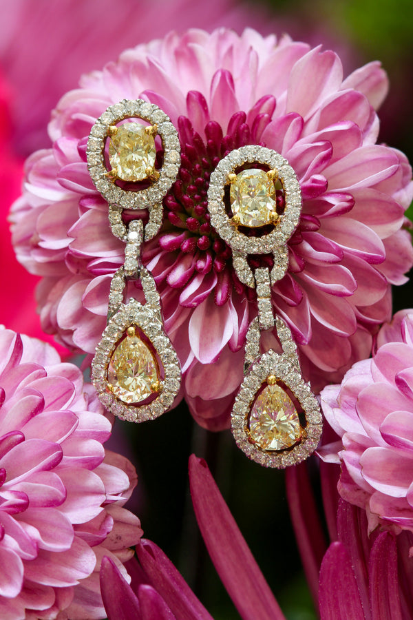 18K White Gold Yellow Diamond Halo Drop Earrings