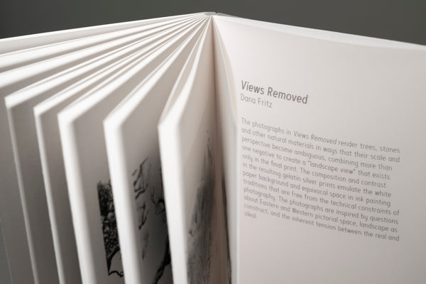 "Views Removed Deluxe Edition (handscroll and accordion with 20""x8"" print) • Dana Fritz"