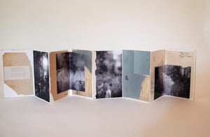 Fly Away • Melissa Lazuka (artist book)