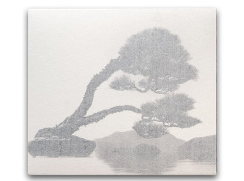 Bonsai - Microcosms Macrocosms • Masao Yamamoto - SIGNED and limited edition