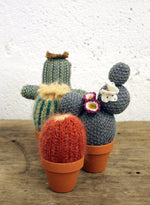 SMALL KNITTED CACTUS
