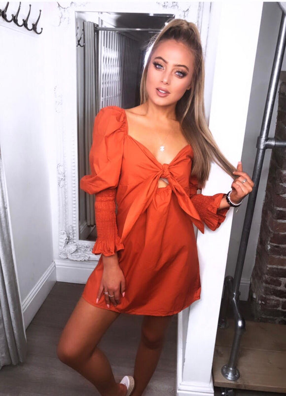 Mel Tie Up Puff Sleeves Dress - Rust