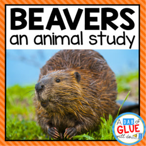 Beavers: An Animal Study