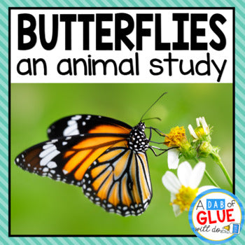 Butterflies: An Animal Study