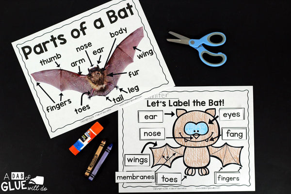 Engage your class in an exciting hands-on experience learning all about bats! Perfect for science in Preschool, Pre-K, Kindergarten, First Grade, and Second Grade classrooms and packed full of inviting science activities. Students will learn about the difference between bats and birds, nocurtnal and dirunal animals, parts of a bat, and a bat's life