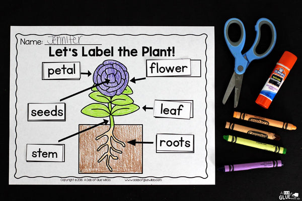 Engage your class in an exciting hands-on experience learning all about plants! Plants Unit (PowerPoint, Lessons, Printables) is perfect for science in Preschool, Pre-K, Kindergarten, First Grade, and Second Grade classrooms and packed full of inviting science activities. Students will learn about the needs of plants, parts of a plant, and the plan