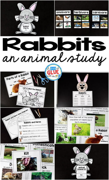 Engage your class in an exciting hands-on experience learning all about rabbits! This Rabbit Facts: An Animal Study is perfect for science in Preschool, Pre-K, Kindergarten, First Grade, and Second Grade classrooms and packed full of inviting science activities. Students will learn about the difference between rabbit and a hare, omnivores, herbivor