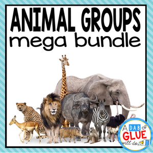 Animal Group Bundle : Mammals Fish Birds Reptiles Amphibians Fish Insects Spiders