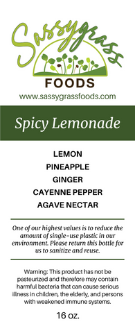 Image of Spicy Lemonade