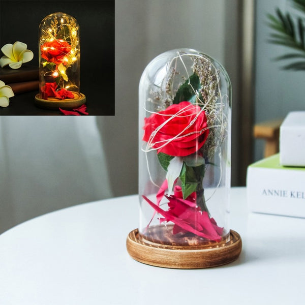 Beauty and the Beast Red Rose w/ Fallen Petals in a Glass Dome