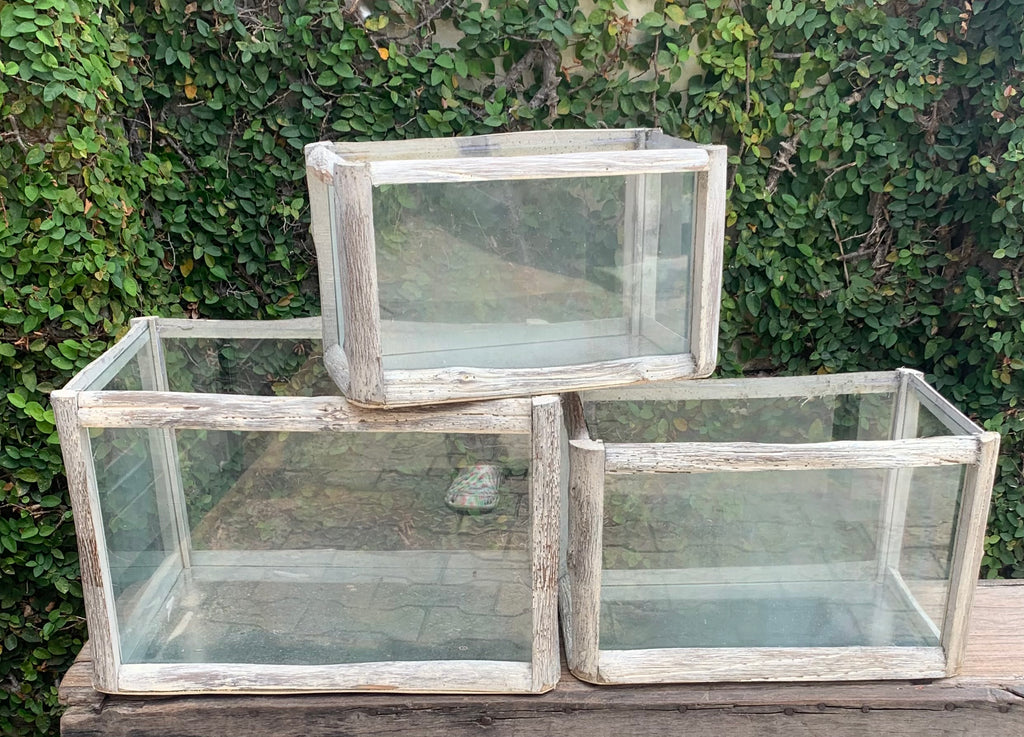 Glass/wood boxes
