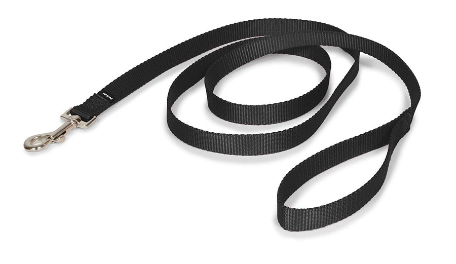 PetSafe Nylon Dog Leash, Strong and Durable Traditional Style Leash with Easy to Use Collar Hook, Available in Multiple Widths and Colors