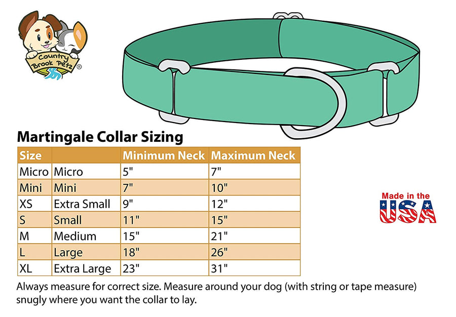 Heavy Duty Nylon Dog Collar