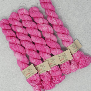 Emma's Yarn - Practically Perfect Sock Minis - 20g - Barbie Girl | Yarn Worx