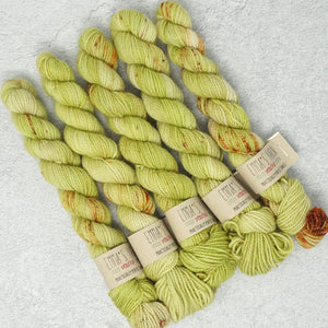 Emma's Yarn - Practically Perfect Sock Minis - 20g - Best Buds | Yarn Worx