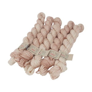 Emma's Yarn - Practically Perfect Sock Minis - 20g - Himalayan Salt