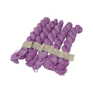 Emma's Yarn - Practically Perfect Sock Minis - 20g - Lilac You Alot
