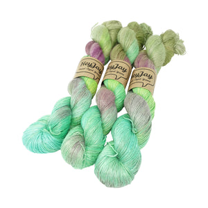 HeyJay Yarns - Planty Yarn - 100g - Adventure Waits for No-one