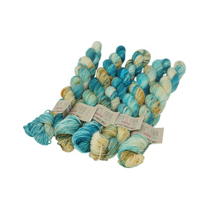 Emma's Yarn - Practically Perfect Sock Minis - 20g - Turtle Haven