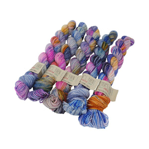 Emma's Yarn - Practically Perfect Sock Minis - 20g - Wing It