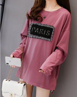 Women's Casual Long Sleeve Tees Round Neck Loose Tunic T Shirt Tops