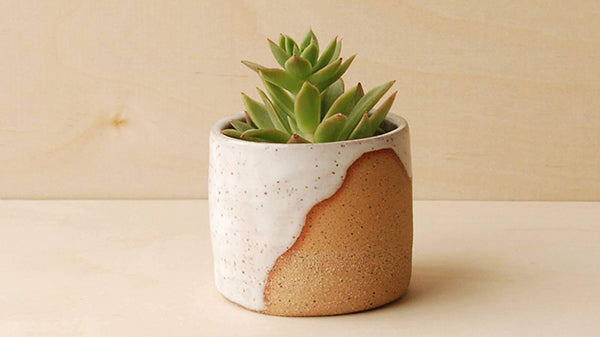 New Origin Shop Mother's Day Guide 2021 - Planters