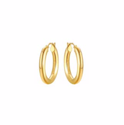 austin boutique hoop everyday earrings