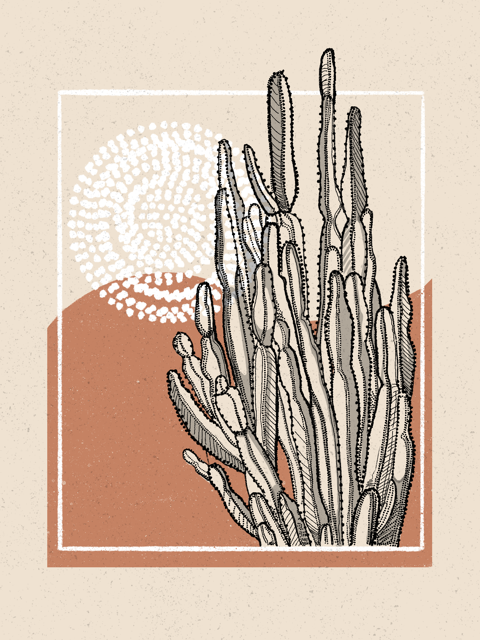 warm toned desert wall decor