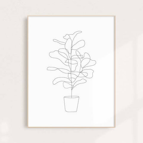Fiddle Fig Illustration Wall Art Print