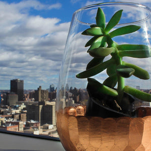 10+ DIY Eco-Friendly Tips for Glass at Home