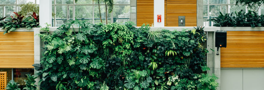 Make your balcony greener with a vertical garden