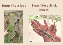 Load image into Gallery viewer, Download Australian animal activities cards