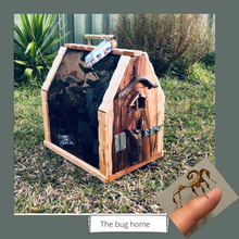 Load image into Gallery viewer, Bug home for pet Insects (large)