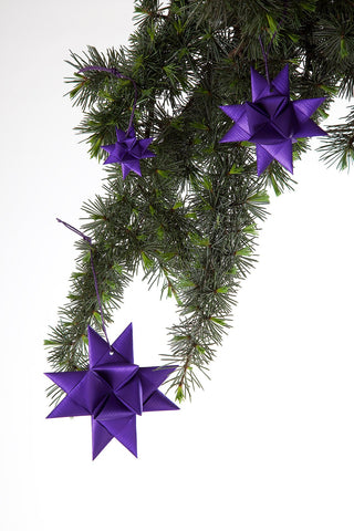 Purple star S - 3 pcs
