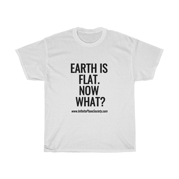 EARTH IS FLAT. NOW WHAT? Infinite Plane Society/ #flatearth  Unisex Heavy Cotton Tee