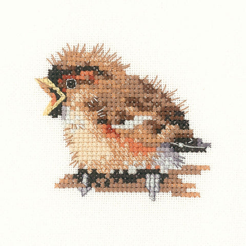 Heritage Crafts Little Friends Cross Stitch Kit - Sparrow (Aida)