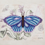 VDV Bead Embroidery Kit - Blue Butterfly
