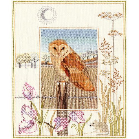 Derwentwater Designs Wildlife Cross Stitch Kit - Barn Owl
