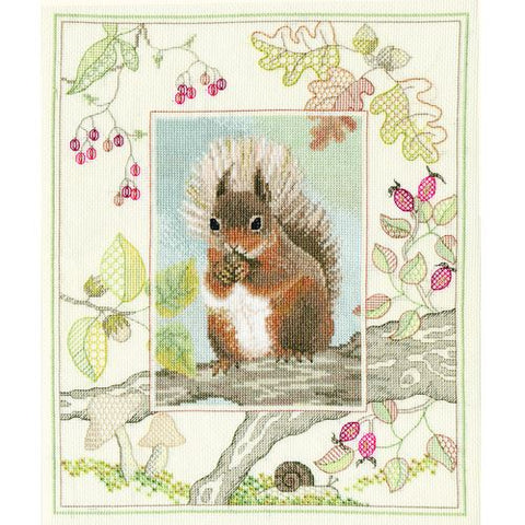 Derwentwater Designs Wildlife Cross Stitch Kit - Red Squirrel