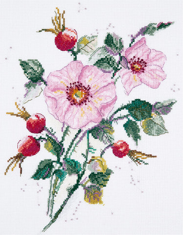 Panna Cross Stitch Kit : Wild Rose in May