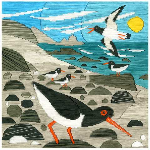 Bothy Threads Silken Long Stitch Kit - Oyster Catchers
