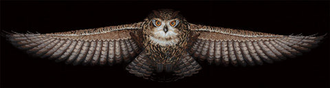 Andriana Cross Stitch Kit - Owl