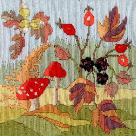 Derwentwater Designs Cross Stitch Kit - Long Stitch Seasons - Autumn