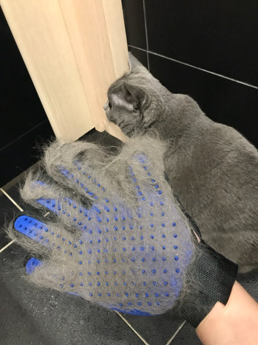 Gloomer Grooming Glove