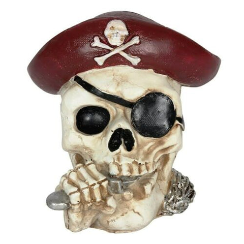 PAGAN/WITCHY/GOTHIC/HALLOWEEN-PIRATE MONEY BOX