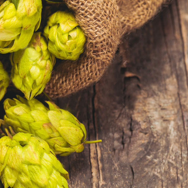 HOPS are Good For you!