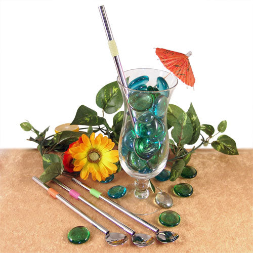 Metal Straw and Spoon Combo (4 Pack)