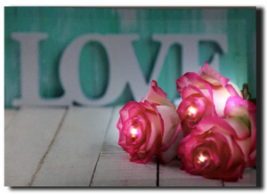 LED canvas roses laying on love