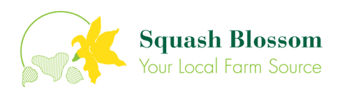Squash Blossom WHOLESALE