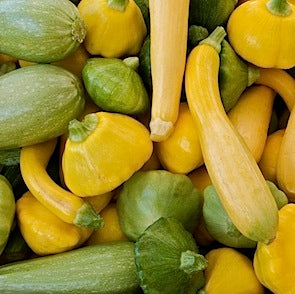 Mixed Summer Squash